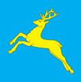 Flag of Sambir.png