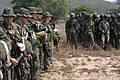 Flickr - DVIDSHUB - Bilateral Amphibious Assault Demonstration at Hat Yao Beach.jpg