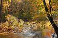 Flickr - Nicholas T - Hogback Ridge Park (7).jpg