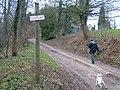 Flood - geograph.org.uk - 312731.jpg