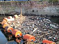 Flotsam and jetsam on the River Don - geograph.org.uk - 684114.jpg