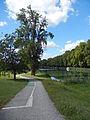 Fontet, Gironde, piste cyclable du canal latéral à la Garonne.JPG