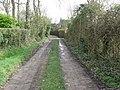 Footpath and track near Marringdean House - geograph.org.uk - 1194281.jpg