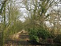 Footpath at Pepper Alley - geograph.org.uk - 1141774.jpg