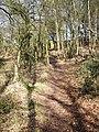 Footpath at Sandy Down - geograph.org.uk - 395720.jpg