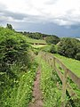 Footpath down to Frodsham - geograph.org.uk - 1388490.jpg