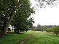 Footpath towards Canons Wood - geograph.org.uk - 584557.jpg