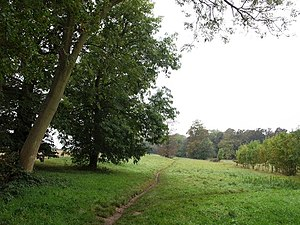 Kingswood, Surrey - Footpath towards Canons Wood on Burgh Heath