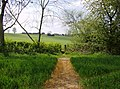 Footpath towards Farthingstone - geograph.org.uk - 490338.jpg