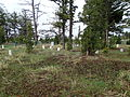 Fort Yellowstone Cemetery Headstones12.JPG