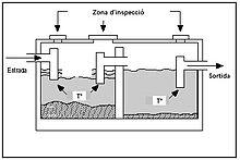 digestion de trigliceridos anabolica o catabolica