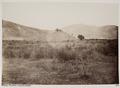 Fotografi av fält där slaget vid Marathon utkämpades - Hallwylska museet - 103082.tif
