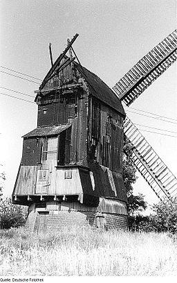 Fotothek df rp-a 0190065 Breitenhagen. Paltrockmühle, Baujahr 1928 (im 19. Jh. als Bockmühle erbaut)