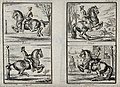 Four different leaps performed by horses with riders, includ Wellcome V0021793.jpg