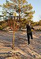 Frisbeegolfia Yyterissä.jpg