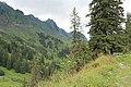 From Klöntal to Schwyz via Muotathal - panoramio (19).jpg