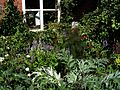 Front garden - Flickr - peganum (19).jpg