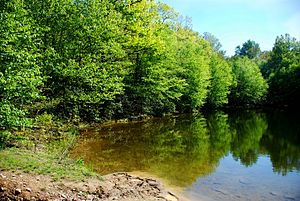 Gambrill State Park - Image: Gambrill state park