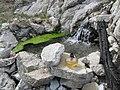 Gandy Warm Springs dyeclan.com - panoramio (1).jpg