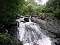 Ganllwyd NNR - panoramio (15).jpg