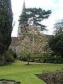 Garden of Hampshire Regiment Museum - geograph.org.uk - 760755.jpg