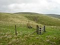 Gate and Stile on Southern Upland Way - geograph.org.uk - 179500.jpg