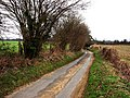 Gatehouse Lane looking north from junction with Cumbers Lane - geograph.org.uk - 708888.jpg