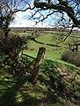 Gateway on Chudleigh Bridleway 3 - geograph.org.uk - 749314.jpg