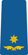 Georgia Air Force OF-4