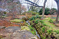 Gfp-texas-dallas-arboretum-small-stream-in-garden.jpg