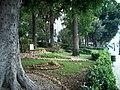 Giardini del lungomare di Reggio Calabria - panoramio.jpg