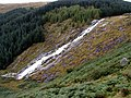 Glenmacnass Waterfall - geograph.org.uk - 19567.jpg