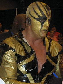 Goldust cropped.jpg