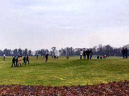 Golf course in Mezhyhirya.jpg