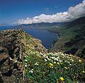 Golfo bascos p010 A21.jpg