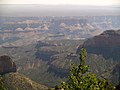 Grand Canyon desde Roosevelt Point. 07.jpg