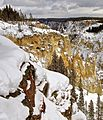 Grand Canyon of Yellowstone National Park - Approaching Storm.jpg