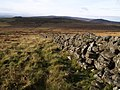 Granite wall near Rippon Tor - geograph.org.uk - 621960.jpg