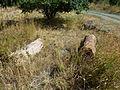 Grave in Marmashen 07.JPG