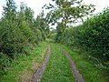 Green lane and permissive path - geograph.org.uk - 939096.jpg