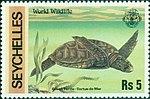 Green turtle 1978 stamp of Seychelles.jpg