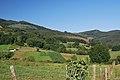 Guriezo, Cantabria, Spain - panoramio (20).jpg