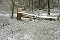 Hövelhofer Wald - Sturmschäden - 4.jpg
