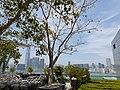 HK 中環 Central 國際金融中心 IFC 平台 terrace 風景 view April 2020 SS2 32.jpg