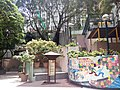 HK 西營盤 Sai Ying Pun 第三街遊樂場 Third Street Playground 公園 LCSD park green plants n trees August 2017 Lnv2 20.jpg