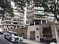 HK ML 香港半山區 Mid-levels 舊山頂道 Old Peak Road near Hornsy Road April 2020 SS2 11.jpg