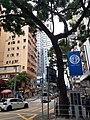 HK WC 灣仔 Wan Chai 軒尼詩道 Hennessy Road September 2020 SS2 12.jpg
