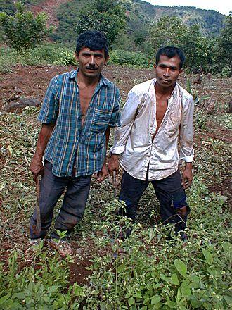 1963 Honduran coup d'état - Honduran farmers