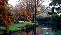 Hagley Park New Zealand. (9535886246).jpg