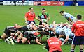 Harlequins vs Racing Metro (11408027236).jpg
